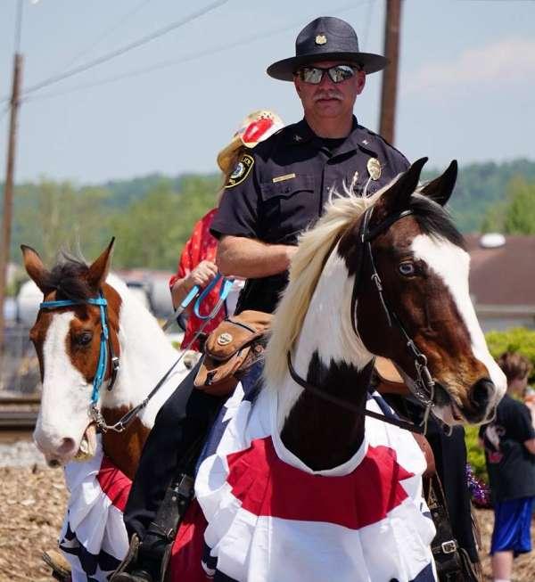 All Horse Parade